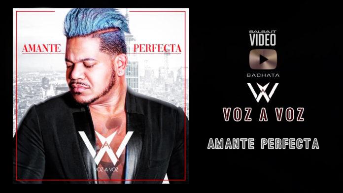 Voz a Voz Amante Perfecta (2019 Bachata lyric video)
