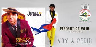 Pedrito Calvo Junior y su Orquesta - Voy a Pedir (2019 Salsa official video)