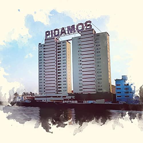 PIDAMOS - PIDAMOS - SINGLE