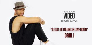Dani J - Dj Got Us Falling In Love Again